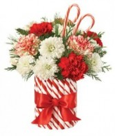 CANDY CANE CHRISTMAS in Miami, FL | THE VILLAGE FLORIST