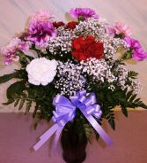 CARNATION PARADE Local Special Only in East Meadow, NY | EAST MEADOW FLORIST