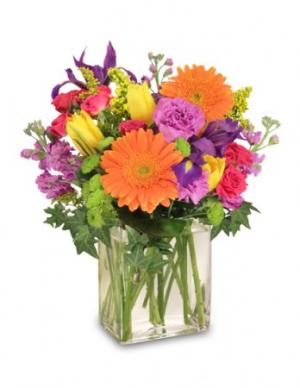 Celebrate Today! Bouquet in Saginaw, TX | WHISTLE STOP FLOWER SHOPPE
