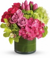 Chic Sensations cylinder arrangement