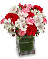 SWEETLY SEASONAL Winter Bouquet