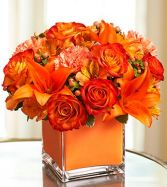 Colors Of Love Orange Flower Arrangment for delivery in dc