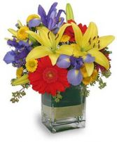 COLORS ON PARADE Flower Arrangement in Houston, TX | MARY'S LITTLE SHOP OF FLOWERS