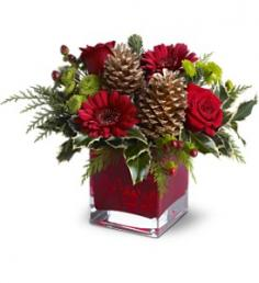 Cozy Christmas  in Presque Isle, ME | COOK FLORIST, INC.