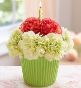 Cupcake for you Flower arrangement in Tampa, FL | BAY BOUQUET FLORAL STUDIO