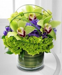 CYMBIDIUM DELIGHT Flower arrangement