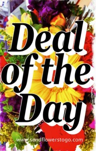Deal of the Day Fresh Flower Arrangement in Colorado Springs, CO | FLOWERS TO GO