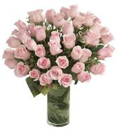 DELIGHTED PINK ROSES  36 PINK ROSES in Rockville, MD | ROCKVILLE FLORIST & GIFT BASKETS