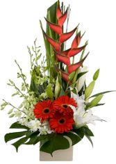 DELILAH DREAMS ARRANGEMENT in Rockville, MD | ROCKVILLE FLORIST & GIFT BASKETS