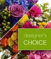 Designers Choice Designers Choice in Fairfield, CT | Blossoms at Dailey's Flower Shop