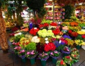Designer's Choice The Freshest Market Flowers Arranged