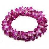 Double Orchid Lei