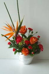 Elegant Birds Tropical Arrangement in Edmonton, AB | JANICE'S GROWER DIRECT