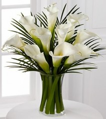 Endless Elegance Calla Lily Bouquet 10 Stems