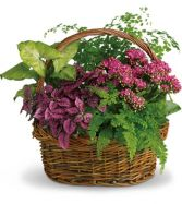 Secret Garden Basket EN-1P