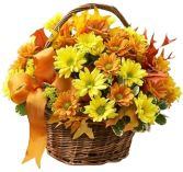FALL DAISY  BASKET in Rockville, MD | ROCKVILLE FLORIST & GIFT BASKETS