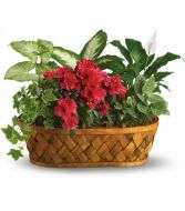 Flower Basket Basket in Walpole, MA | VILLAGE ARTS & FLOWERS