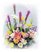 Flowers Say What Words Can't Perfect for a service or a home  RR-1001