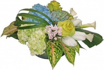 Fresh and Contemporary Cut Flower Arrangement