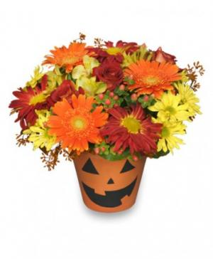 Bloomin' Jack-O-Lantern Halloween Flowers in Broadway, VA | EVERGREEN FLORIST