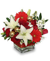 DECEMBER DREAMS Arrangement in Worthington, OH | UP-TOWNE FLOWERS & GIFT SHOPPE