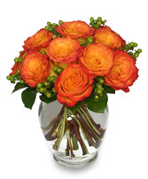 FLAMES OF PASSION Roses Arrangement in Cranston, RI | ARROW FLORIST/PARK AVE. GREENHOUSES