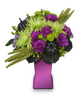 HOCUS POCUS Halloween Arrangement in Jasper, IN | WILSON FLOWERS, INC