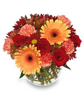 HOT & SPICY Vase of Flowers in Woburn, MA | THE CORPORATE DAISY