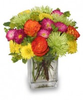 NEON SPLASH Bouquet Best Seller in Muskego, WI | POTS AND PETALS FLORIST INC.