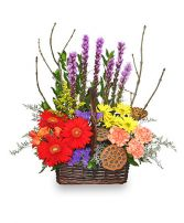 OUT OF THE WOODS Flower Basket Best Seller in Cary, IL | PERIWINKLE FLORIST