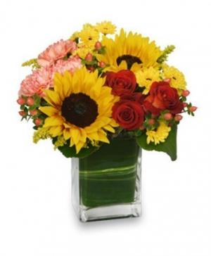 Season For Sunflowers Floral Arrangement in Newcastle, ON | New Bloom's Floral & Event Design