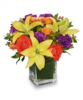 SHARE A LITTLE SUNSHINE Arrangement in Wheatfield, IN | STEMS N' SUCH