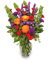 HOORAY FOR SUMMER! Bouquet in Rockville, MD | ROCKVILLE FLORIST & GIFT BASKETS
