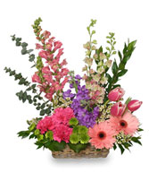 SPRING RETURNS! Floral Arrangement in Jasper, IN | WILSON FLOWERS, INC