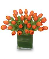 ORANGE OASIS Bouquet of Tulips in Lafayette, LA | LA FLEUR'S FLORIST & GIFTS