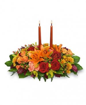 Thanksgiving Feast Centerpiece in Worcester, MA | LADYBUG/GEORGE'S FLOWER SHOP