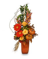 TOASTED PUMPKIN Fall Flowers in Saint John, IN | SAINT JOHN FLORIST