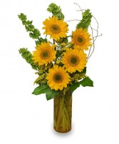 TODAY'S YOUR DAY Bouquet in Michigan City, IN | WRIGHT'S FLOWERS AND GIFTS INC.