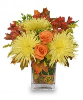 WINDY AUTUMN DAY Bouquet in Dieppe, NB | DANIELLE'S FLOWER SHOP