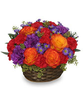 YOU MAKE LIFE GRAND Basket Arrangement in Bath, NY | VAN SCOTER FLORISTS