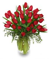 CHERRY RED TULIPS Bouquet in Bryant, AR | FLOWERS & HOME OF BRYANT
