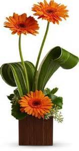 Gerbera Extravaganza Contemporary Fresh Arrangement
