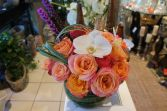 Get out of the Dog House Floral Bouquet in Houston, TX | AJ'S URBAN PETALS