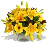 GOLDEN AFTERNOON in Rockville, MD | ROCKVILLE FLORIST & GIFT BASKETS