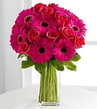 Gorgeous Gerber Daisies Flower Delivery In DC
