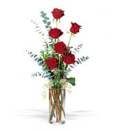 HALF DOZEN RED ROSES in Edison, NJ | E&E FLOWERS AND GIFTS