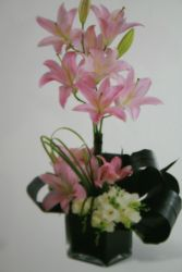 High styler lilies DC Florist in Shaw