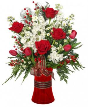 HOLIDAY HAPPINESS Christmas Arrangement in Presque Isle, ME | COOK FLORIST, INC.