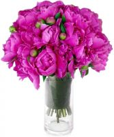 HOT PINK  PEONIES BOUQUET in Rockville, MD | ROCKVILLE FLORIST & GIFT BASKETS