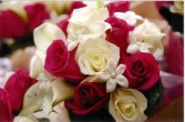 Hot Pink Roses And Steph Bridal Bouquet